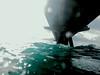 mal día de buceo... (Fco. Javier Gallardo) Tags: canons90 puertodesagunto fotografíasubacuática fotografíadigital