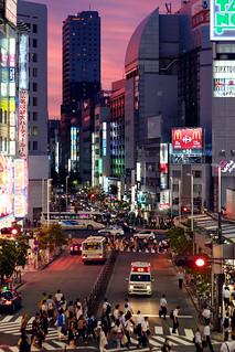 赤紫が染める新宿西口