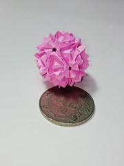 DSC_0016 (anlode) Tags: origami kusudama