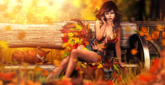 Warm autumn (meriluu17) Tags: autumn boudoir foxcity enfersombre jian leaves orange fall warm warmth light lights yellow fox foxes fairy fairies surreal animal wild