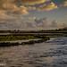 Clarin River, Clarinbridge-1