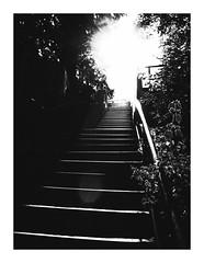 burningstairs (seba0815) Tags: ricohgrdiv grdiv grd monochrome stairs burning burningstairs city sopot poland polska vacation summer light sun nature street people silhouette dark blackwhite blackandwhite black white blanc noir schwarzweis czarnobiale urban mood seba0815