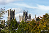 Ely Cathedrl (wells117) Tags: 14thcenturyoctagonallanterntower 2017 august2017 elycathedral anglican anglicancathedral aug august building cathedral city cityview clivewells ely tower trees view westtower worship
