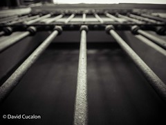 Lines (David Cucalón) Tags: david cucalon lines lineas blackandwhite blanco y negro blur desenfoque arquitectura architecture city