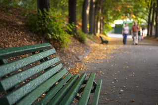 The bench in Loneliness