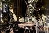 AquidSela 160616 028 Selaria Renascer pátio (Valéria del Cueto) Tags: aquidauana matogrossodosul brasil selaria couro objetos instrumentos boi pecuária ´fazenda pantanal norumo decueto turismo aventura tradição campo valériadelcueto