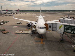 170822-23 PDX-NRT-12.jpg (Bruce Batten) Tags: chiba vehicles aircraft plants subjects transportationinfrastructure cloudssky atmosphericphenomena trees locations trips occasions airports honshu people shadows japan airplanes naritashi chibaken jp reflections