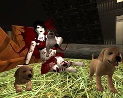 Abaddon (Arya Spires-Dillion) Tags: firestorm secondlife secondlife:region=smokeyvalley secondlife:parcel=immortalcastawayshordeclan secondlife:x=36 secondlife:y=224 secondlife:z=3796 roleplay dragons fae mermaid bard wolfs orcs elves dwarfs unicon mystics vampires magic