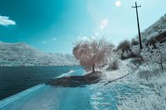 Monte Isola Aug 25 2017 (seantgUK) Tags: 5di infrared lakeiseo italy salzano lagodiseo monteisola canon ir