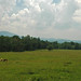 Cades+Cove+tectonic+window+%26+Blue+Ridge+%28Great+Smoky+Mountains%2C+Tennessee%2C+USA%29+1
