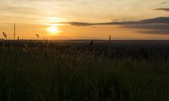 The light of Sunset....... (ravijaichand) Tags: sunset sun light sunlight scenery landscape field sky