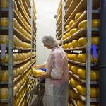 't Groendal kaasboerderij (cheesemaker) thumbnail