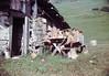 Verpflegung (Alvier) Tags: schweiz switzerland graubünden oberland wanderlager pfadfinder pfadi pfadfinderabteilungalvierbuchssg wandern berge alp