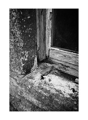 02 (Demeisen) Tags: window scotland atmospheric remote collection art ruined abandoned deserted