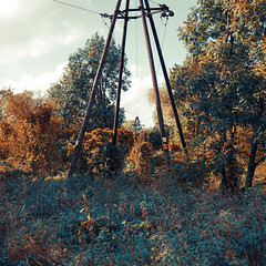 214 (Krzysztof Wladyka) Tags: square wladyka outdoor sonnartfe2835 electrical wires wooden electric pole high voltage bush trees autumn fall