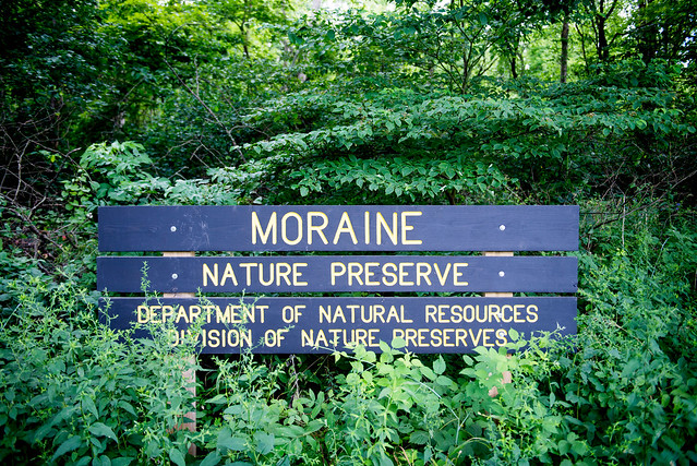 Moraine Nature Preserve - July 24, 2017