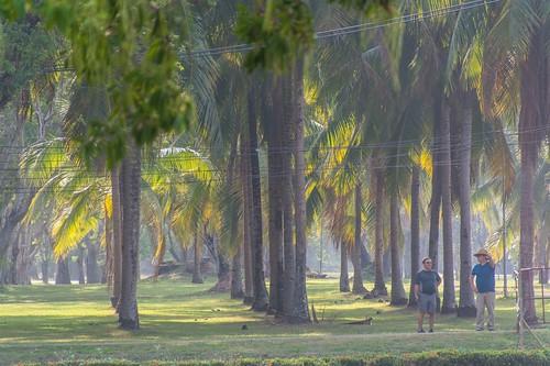 sukhothai - thailande 40