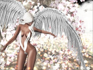 Day Dreams and Angel Wings