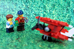 Big Bird Watching (Lesgo LEGO Foto!) Tags: lego minifig minifigs minifigure minifigures collectible collectable legophotography omg toy toys legography fun love cute coolminifig collectibleminifigures collectableminifigure plane airplane air watch watching dad son parent child parents children