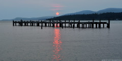 2017-08-07 Sunset (2048x1024) (-jon) Tags: anacortes skagitcounty skagit washingtonstate washington salishsea fidalgoisland sanjuanislands pugetsound guemeschannel pnw pacificnorthwest northwest pacific waterfront sky sunset sun red ball redball fires smoke haze forestfire wildfires britishcolumbia standardoil water abandoned pier dock a266122photographyproduction cormorants doublecrestedcormorantss