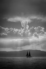 The Black Sailboat (parenthesedemparenthese@yahoo.com) Tags: dem bw backlighting blackwandwhite blancetnoir clouds lake landscape leman monochrome sun sunray blancoynegro byn ciel cielnuageux cloudysky contrejour lac nuages rayondusoleil sailboat soleil voilier