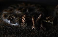 If you rest, you rust...Helen Hayes (judi may) Tags: macromonday macro macromondays rust rusty old rusted metal rustymetal screws rustyscrews lowkey lowlight black blackbackground canon7d texture textures dof depthoffield bokeh