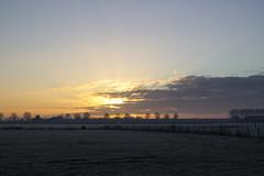 Sunrise in December (Photography by Martijn Aalbers) Tags: sunrise zonsopgang dageraad ochtendgloren dawn daybreak sun zon winter december canoneos550d ef35mmf2isusm wwwgevoeligeplatennl guelders gelderland geldermalsen landscape landschap country platteland