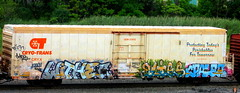 wither - blies - mpaler (timetomakethepasta) Tags: enter risc amfm withe wither blies mpaler freight train graffiti art cryx cryotrans reefer gem state benching selkirk new york photography