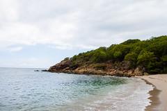 IMG_9960 (c12ninja) Tags: stthomas virginislands island beach stjohns carribean c12productions iguana surf sand