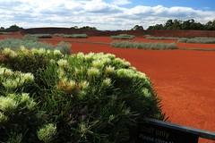 Cranbourne RBG Aug 2017 257 (Graeme Butler) Tags: water landscape history gardens australianplants architecture victoria australia