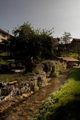 Le Nozon (cerfynie) Tags: romainmotier croy nozon riviere vaud abbatiale