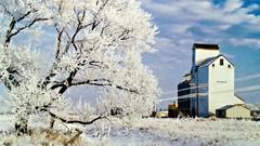 chilly siding in Manitoba (ènfin (verna)) Tags: picmonkey beautifulphoto