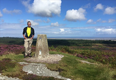 32 of 52 trig points (Ron Layters) Tags: 2017 ronlayters selfportrait 52trigpoints greensheenhill trigpoint sunny lookingtothecoast heather windy stcuthbertsway vista view sea walk wetlands coast clouds fineweather day4 pillar tp0686 fbs41616 belford northumberland england unitedkingdom 52weeks 52 phonecamera iphone apple appleiphone6 selftimer tripod 10secondtimer weekthirtytwo week32 32