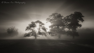 A Moody Morning At Lazonby