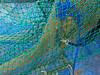 ネット NET (SHIBATA KEN) Tags: japan 日本 tokyo 東京 texture テクスチャー net ネット