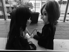 (it's_a_secret) Tags: pullip stica dolls taeyang shade jun planning groove