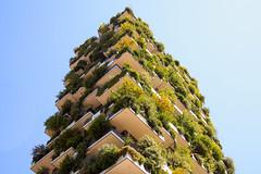 Bosco Verticale (Vertical Forest) - Milano (Tommaso Gorla) Tags: architettura achitecture bosco verticale vertical forest milano milan italy italia boeri architetto
