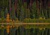 Happy First Day of Fall - 9995b+ (teagden) Tags: firstdayoffall firstdayofautumn fall autumn fallcolors autumncolors reflection jenniferhall jenhall jenhallphotography naturephotography nature nikon photography landscape landscapephotography scenic autumnscene fallscene equinox 2017 autumnequinox2017 autumnequinox patricia lake patricialake jasper national park jaspernationalpark alberta canada albertacanada ocomelookforthisone