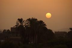 DSC06906 (Jordi Beitia) Tags: egypt nile sunset