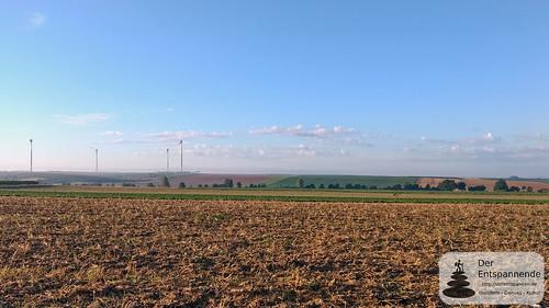 Felder und Weinberge über Selzen