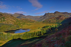 Blea Tarn and the Langdales (images@twiston) Tags: bleatarn langdales langdale pikes tarn morning light lake cumbria lakedistrict lakeland view scenic thelakes lakedistrictnationalpark nationaltrust fell fells grass cumbrian mountains landscape imagestwiston district national park countryside mountain blue green englishlakedistrict lakes thelakedistrict still calm wideangle wide angle sidepike lingmoorfell pikeoblisco greatlangdale littlelangdale bowfell bleatarnhouse unesco worldheritagesite unescoworldheritagesite