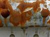 錆 RUST (SHIBATA KEN) Tags: japan 日本 tokyo 東京 rust 錆 ガードレール guardrail texture テクスチャー