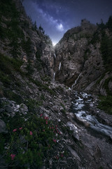 Rusty-leaved Alpine Roses (Manuel.Martin_72) Tags: graubünden swissalps switzerland darkmood darkness fairytale lightdrama magic mysterious flowers gorge mountains rocks stones trees cascade river water waterfall milkyway glow stars night twilight davos