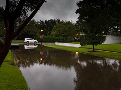 Finally, we have a break (apollonian) Tags: land sugar texas houston 2017 storm tropical hurricane harvey depression flood flooded fort bend brazos river tormenta tropica huracán county