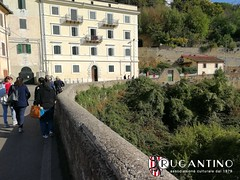 gita_viterbo_palazzo_farnese_2017_associazione_rugantino_165