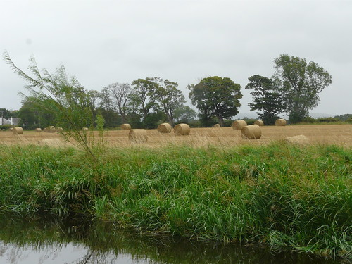 Fields Outside Ratho