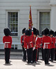 Img596081nx2 (veryamateurish) Tags: london westminster wellingtonbarracks army military changingoftheguard oldguard householddivision grenadierguards