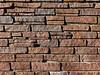 壁 WALL (SHIBATA KEN) Tags: japan 日本 tokyo 東京 wall 壁 texture テクスチャー レンガ