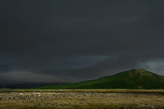 day 15  clouds over the green hill (trying to catch up again !!!) Tags: clouds sunny sheep landscape outdoor scenery green greenhill ivodedecker iceland ísland travel southiceland