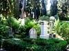 Protestant Cemetery Rome   DSC00265